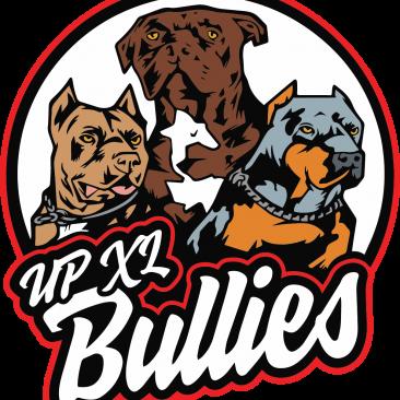 UP XL Bullies