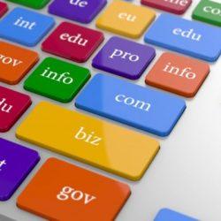 Domain Name Transfers at Green Web Design