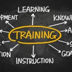 Website Training Online